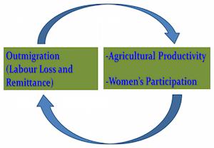 Outmigration, Agricultural Productivity, Women's Participation